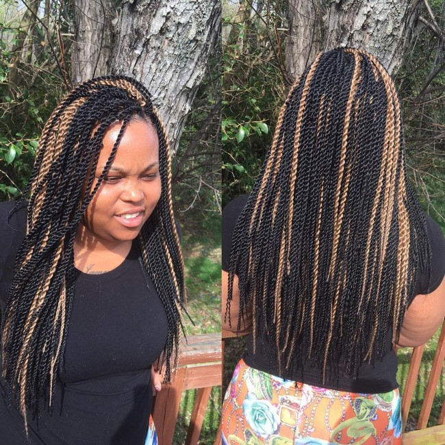 Highlighted Twist Braids