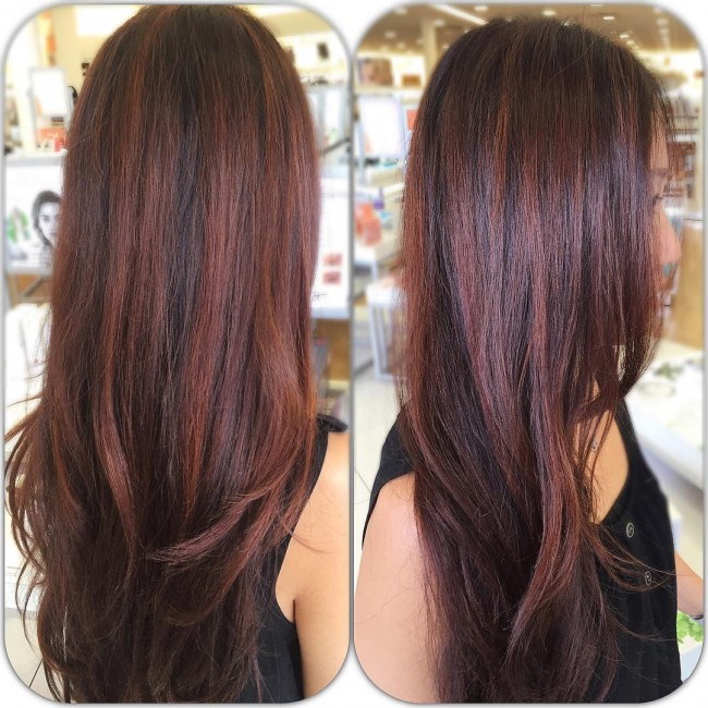 Dimensional Copper Red Highlights
