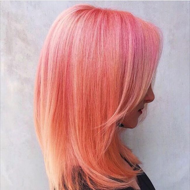 Peach and Orange Pastel