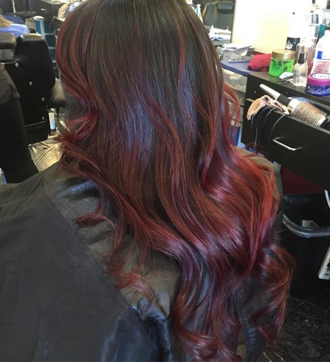 Black to Red and Chocolate Brown Blend