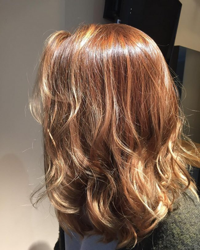 Dark to Light Brown Ombre