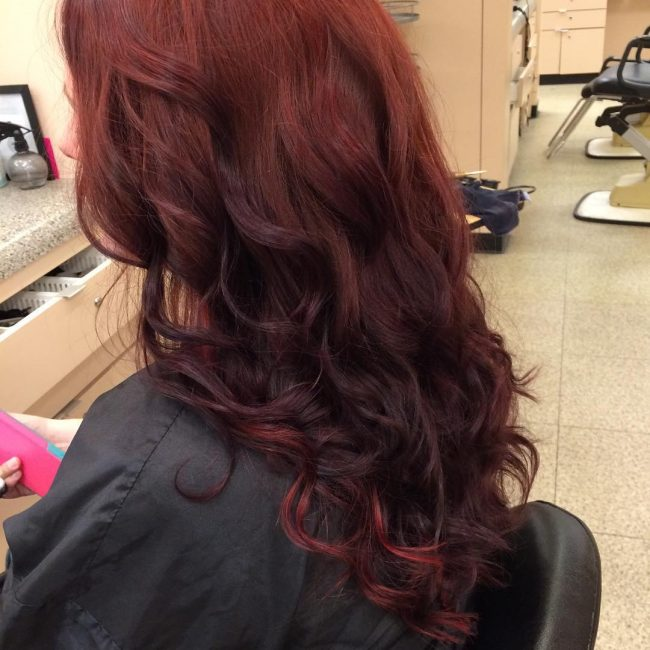 Red to Dark Brown