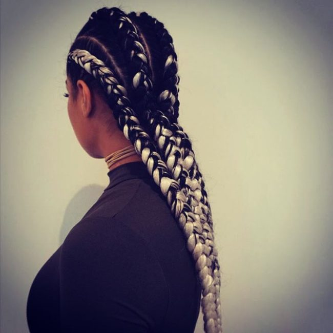 Back and White Box Braids