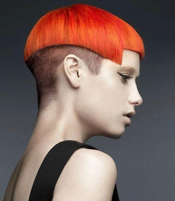 Bright Orange Cut