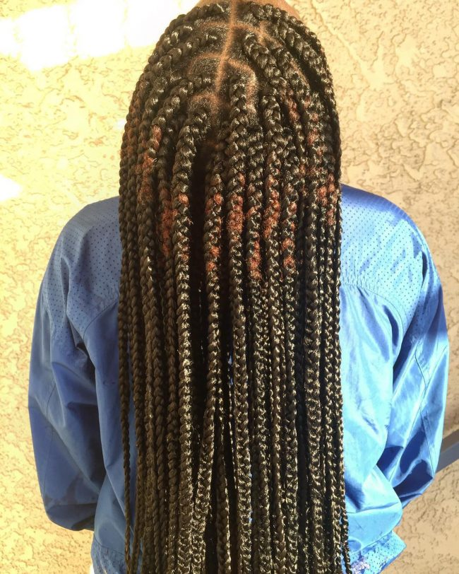 Colorful and Protective Box Braids