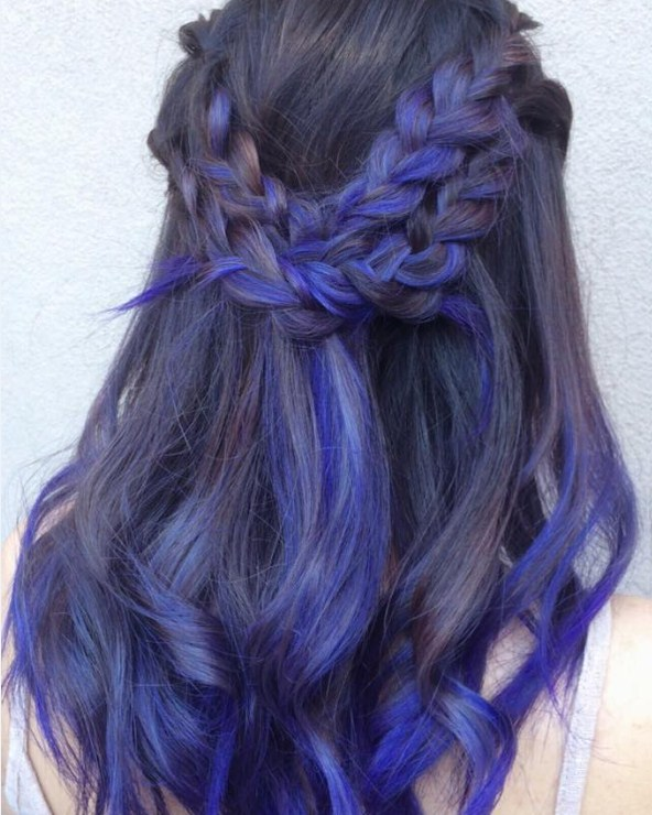 Gorgeous Braided Violet Locks