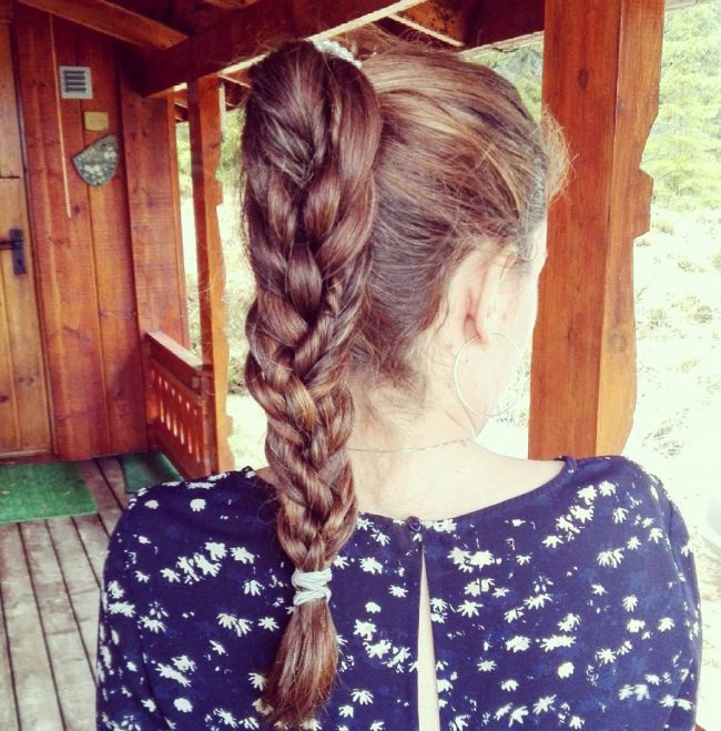 High Braided Ponytail