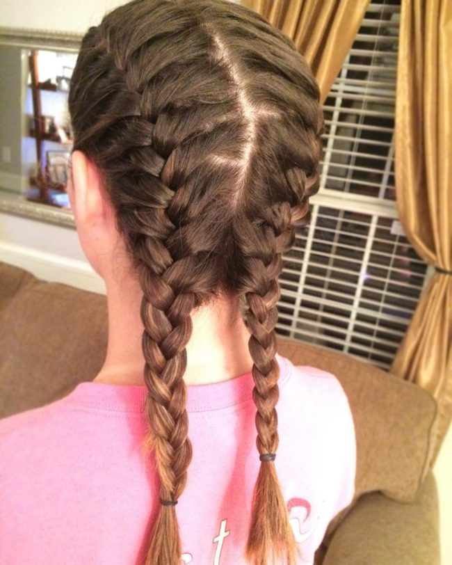 Stylish French Braided Pigtails