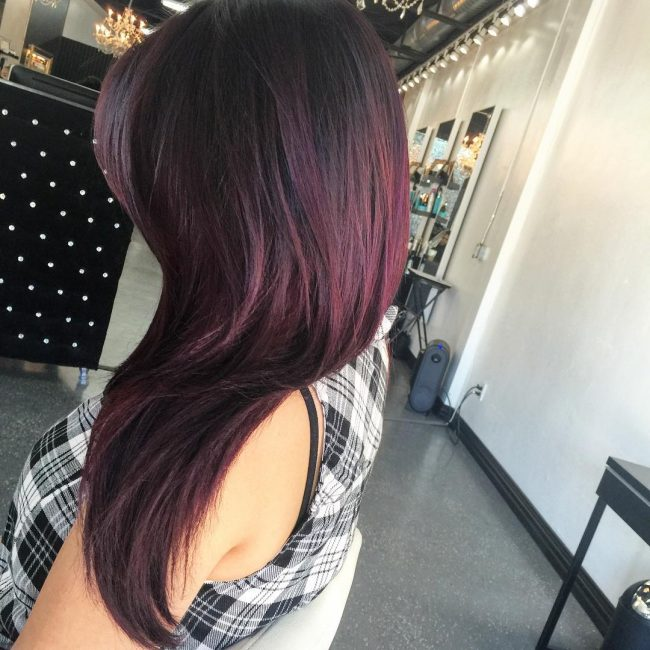 Dark Plum Fall Hair