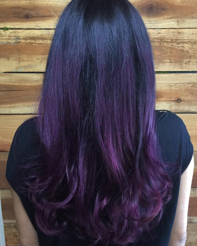 Dark Purple to Plum Ombre