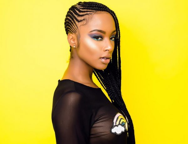 Box Braid Hairstyles 12