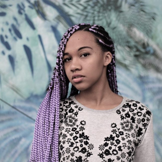 Box Braid Hairstyles 14
