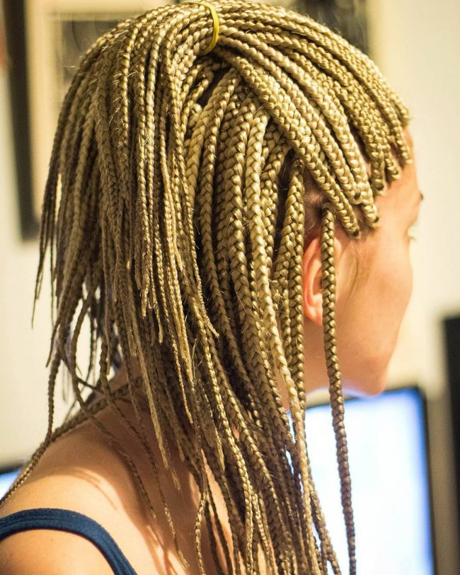 Box Braid Hairstyles 19