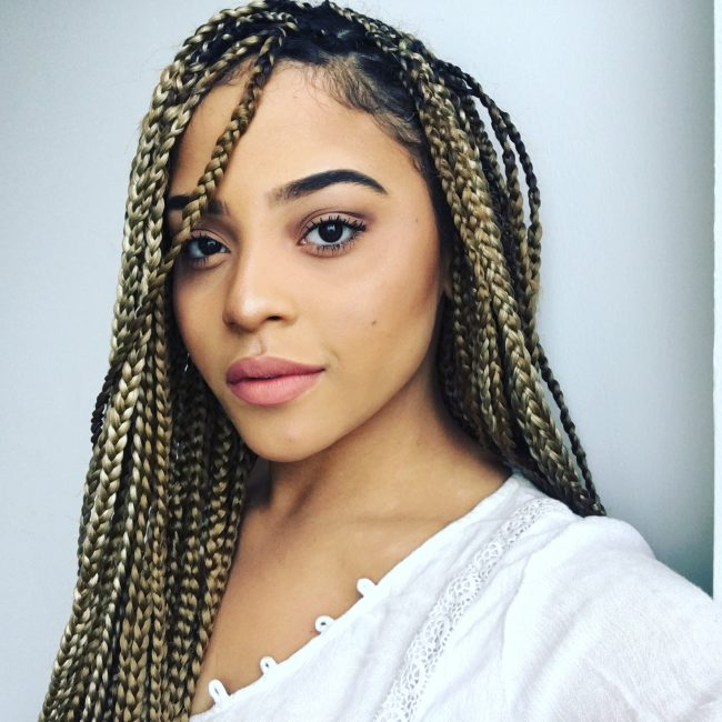 Box Braid Hairstyles 45