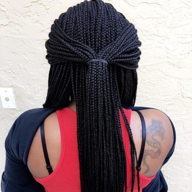 Box Braid Hairstyles 49